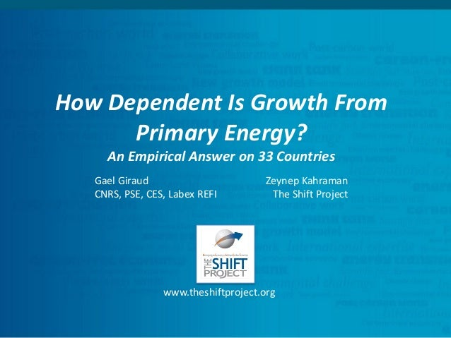 GDP/Energy link - Rome 14th IAEE European Energy Conference