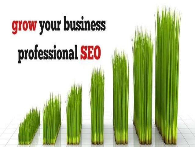 SEO Online Training Slide 3