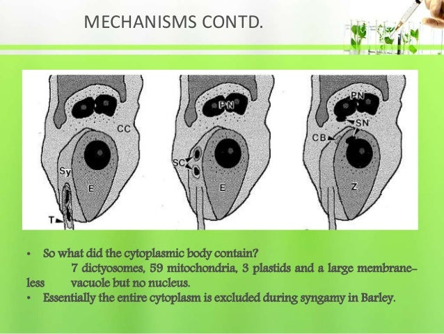 MECHANISMS CONTD. • So what did the cytoplasmic body contain? 7 dictyosomes, 59 mitochondria, 3 plastids and a large membr...