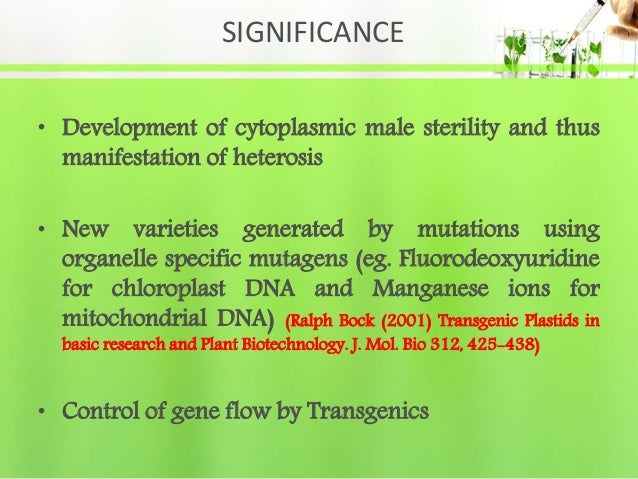 SIGNIFICANCE • Development of cytoplasmic male sterility and thus manifestation of heterosis • New varieties generated by ...