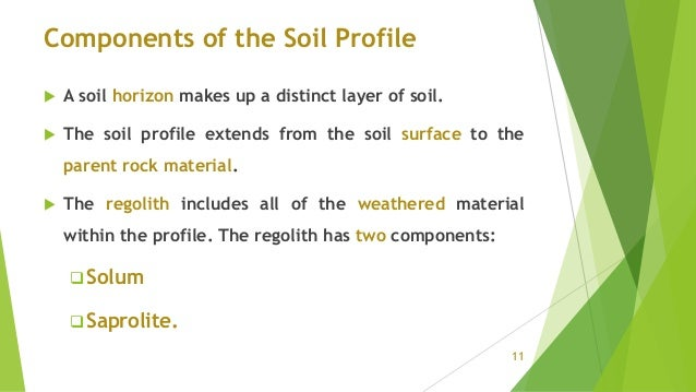 Components of the Soil Profile  A soil horizon makes up a distinct layer of soil.  The soil profile extends from the soi...