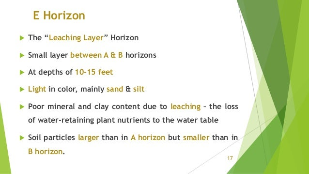 """E Horizon  The """"Leaching Layer"""" Horizon  Small layer between A & B horizons  At depths of 10-15 feet  Light in color, ..."""