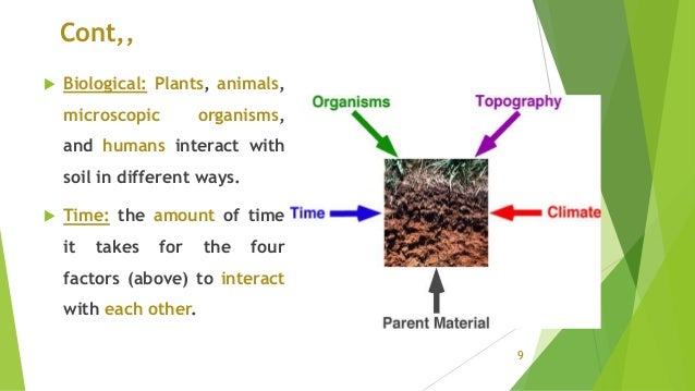 Cont,,  Biological: Plants, animals, microscopic organisms, and humans interact with soil in different ways.  Time: the ...