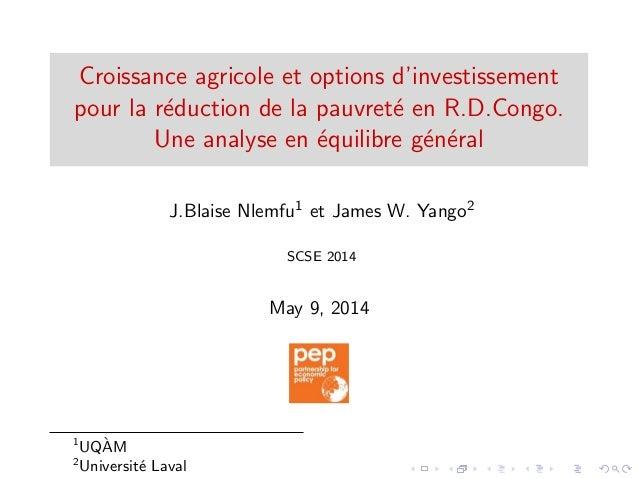 Croissance agricole et options d'investissement pour la r´eduction de la pauvret´e en R.D.Congo. Une analyse en ´equilibre...