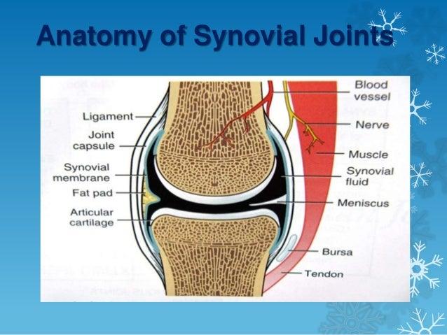 Arthroscopic Versus Open Synovectomy In Rheumatoid Knee