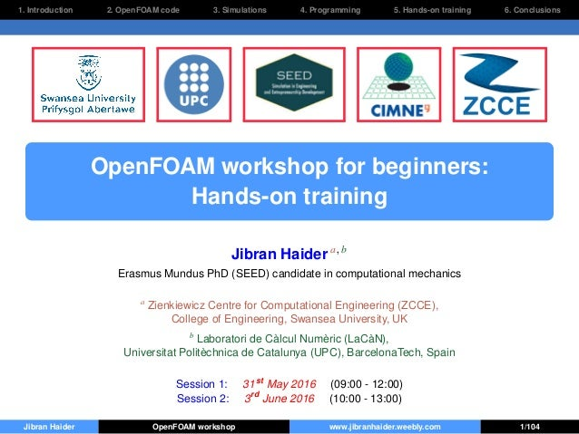 1. Introduction 2. OpenFOAM code 3. Simulations 4. Programming 5. Hands-on training 6. Conclusions OpenFOAM workshop for b...