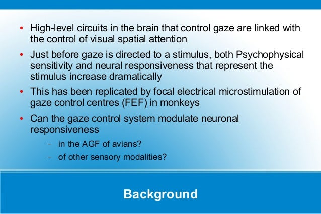Top down gain control presentation on a paper by winkowski and knuds top down gain control presentation on a paper by winkowski and knudsen sciox Choice Image