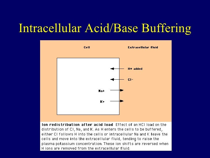 elemtary overview of acids and bases Elementary school science - course descriptions middle school science  acids and bases, metal reactivities, water cycle, natural resources, and plate tectonics  to give students a comprehensive introduction to the scientific concepts and.