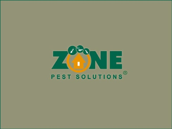 Atlanta Termite Control Solution For Pests    Termites have the capability to swallow and gulp down every single natural t...