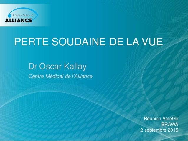 PERTE SOUDAINE DE LA VUE Dr Oscar Kallay Centre Médical de l'Alliance Réunion AméGé BRAWA 2 septembre 2015