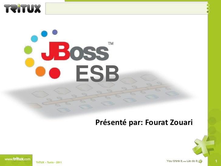 ESB<br />Présenté par: FouratZouari<br />1<br />TriTUX – Tunis – 2011 <br />