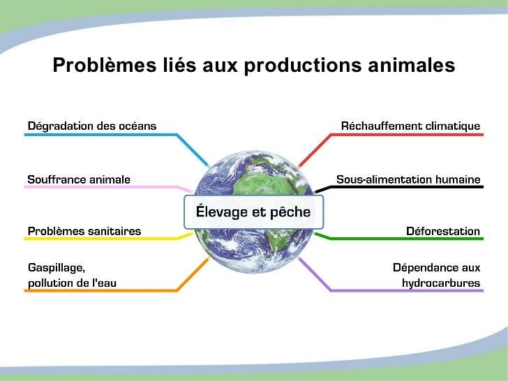 Problèmes liés aux productions animales