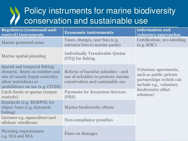 ecosystem services and their importance to Work is ongoing around the world to restore these important ecosystems seagrass beds are important feeding grounds for thousands of species around most management that protects seagrasses focuses on maintaining their biodiversity and the services these habitats provide for humans and.