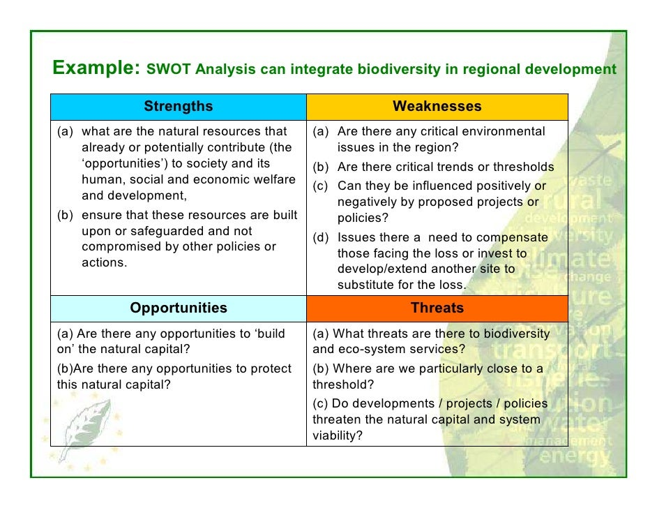 swot analysis in meat industry
