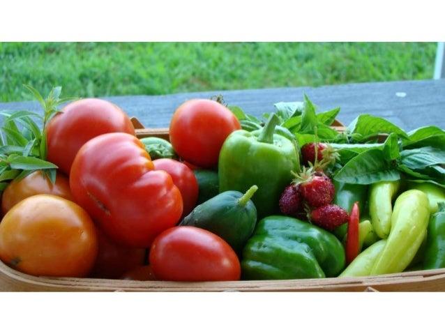 VEGGIE & FRUIT GARDENING have your best growing season ever… even up here! Margaret Rode, Evergreen Community Gardener