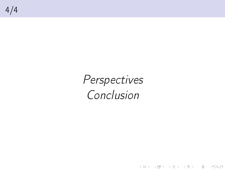 4/4      Perspectives       Conclusion