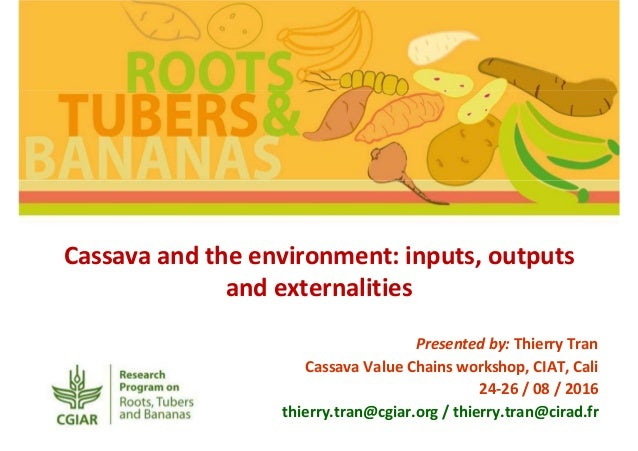 Cassava and the environment: inputs, outputs and externalities Presented by: Thierry Tran Cassava Value Chains workshop, C...