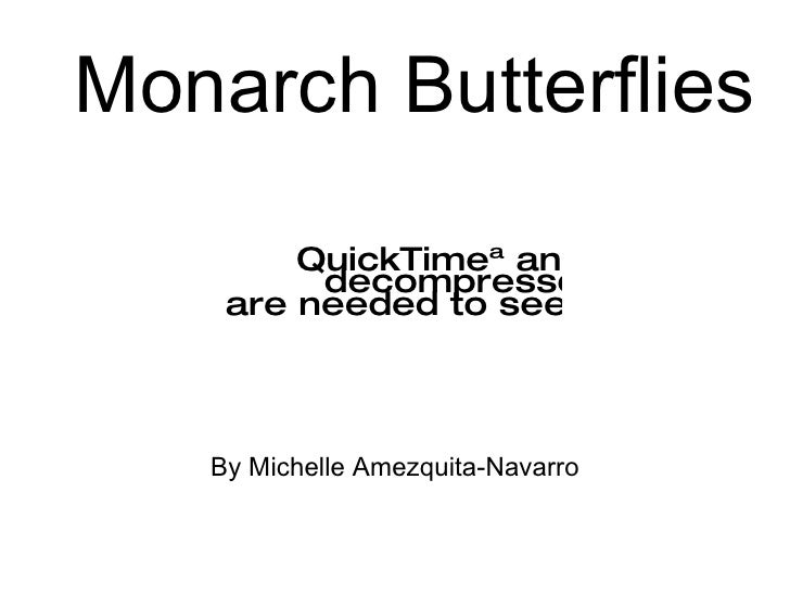 Monarch Butterflies          QuickTimeª and a          decompressor     are needed to see this picture.       By Michelle ...