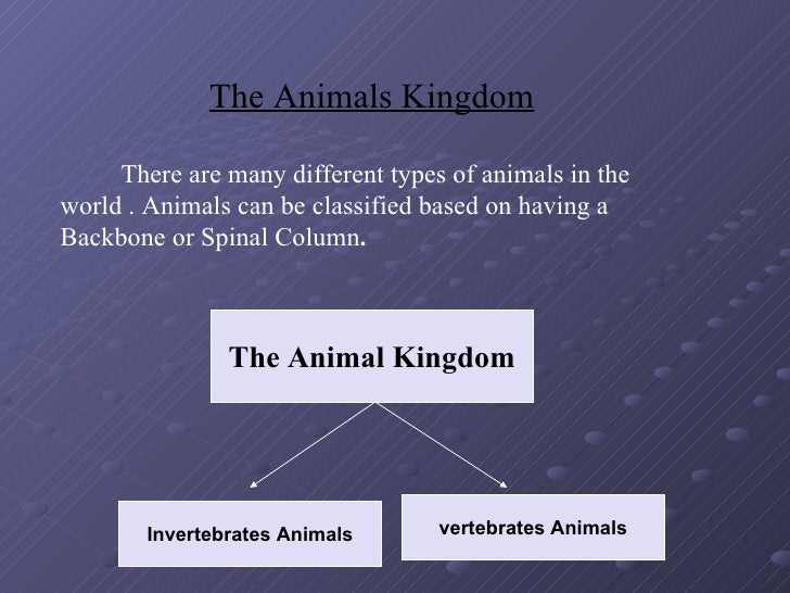 The Animals Kingdom       There are many different types of animals in the world . Animals can be classified based on havi...