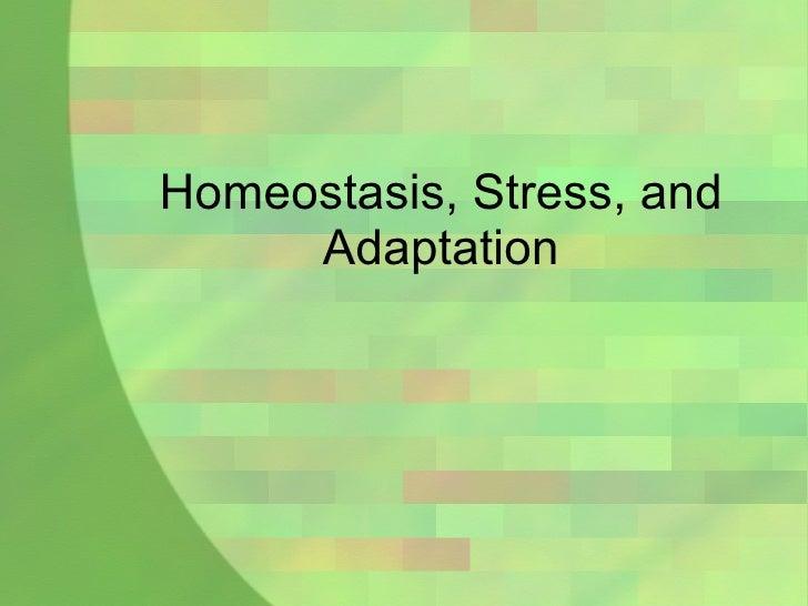 Homeostasis, Stress, and Adaptation