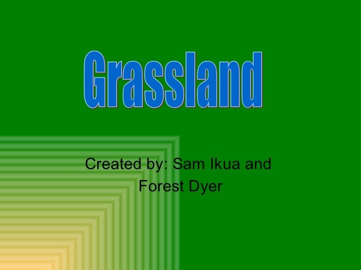 Created by: Sam Ikua and  Forest Dyer Grassland
