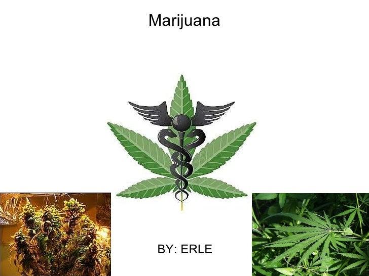 Marijuana BY: ERLE