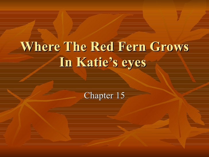 Where The Red Fern Grows In Katie's eyes  Chapter 15