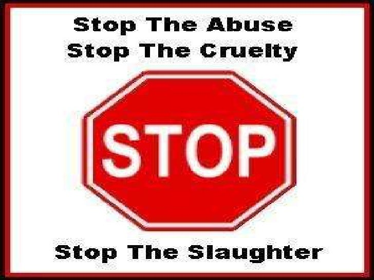 STOP ANIMAL CREULTY  br     64. Animal Cruelty Power Point