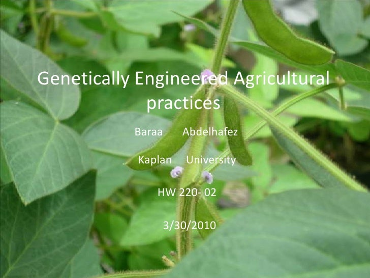 Genetically Engineered Agriculturalpractices<br />                                                  :::<br />Baraa       A...