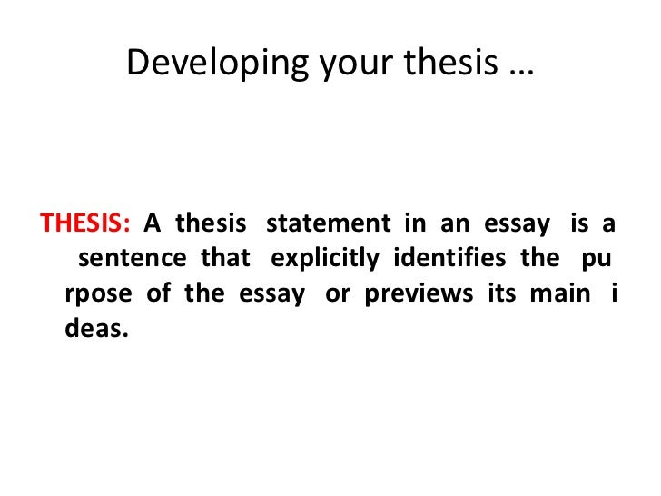 How To Make A Good Thesis Statement For An Essay. Example Of ...
