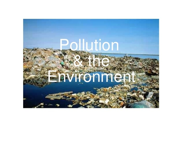 Pollution   & the  Environment