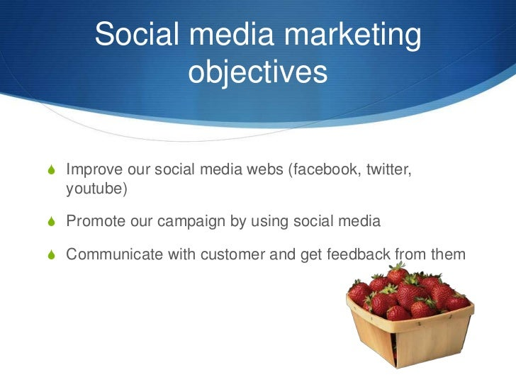 Social media marketing objectives<br />Improve our social media webs (facebook, twitter, youtube)<br />Promote our campaig...