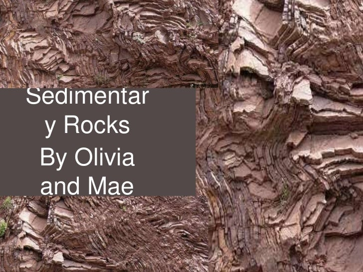Sedimentar y Rocks By Olivia and Mae