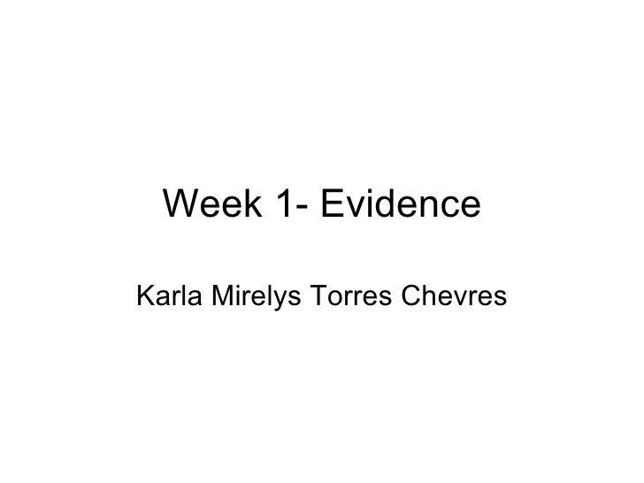 Week 1- Evidence Karla Mirelys Torres Chevres