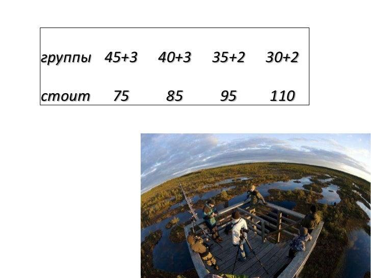 группы 45+3   40+3   35+2   30+2стоит   75    85     95     110