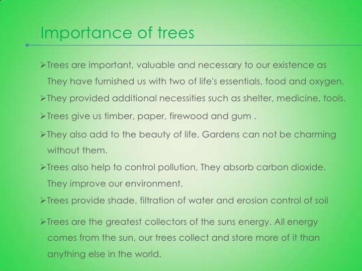 essay on importance of tree in our life Etc by seeing the importance and value of trees in our life,  ways to save a tree and save life and environment  about save trees essay.