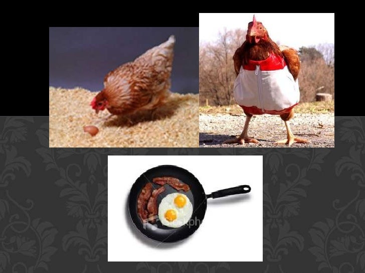 Great Mystery Publishing: KFC's new genetically-engineered ...  |Genetically Mutated Chicken