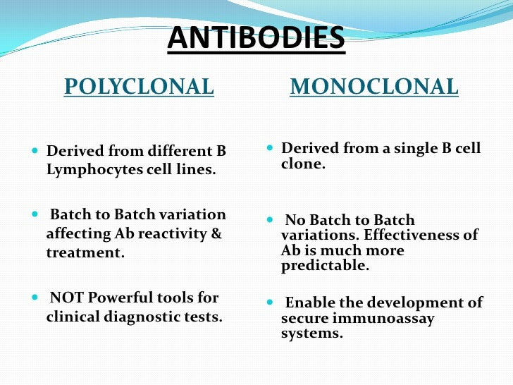 monoclonal antibodies Start studying monoclonal antibodies learn vocabulary, terms, and more with flashcards, games, and other study tools.
