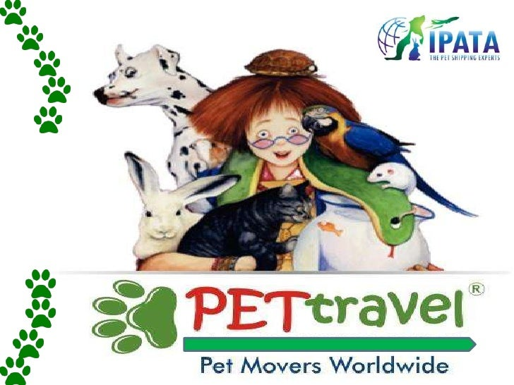 ABOUT PET TRAVELPet Travel is a member of IPATA.SERVICES OFFERED: Pick up & Delivery betweenresidence & airport.Supply I...