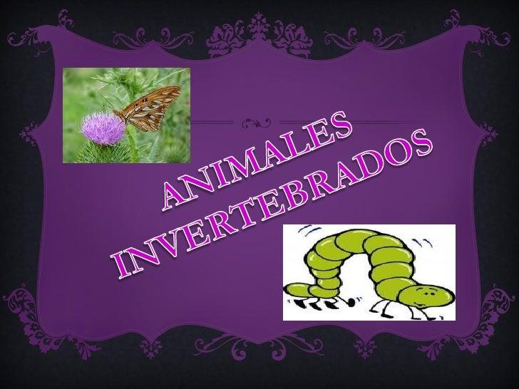 4, cuales de estos animales son vertebrados