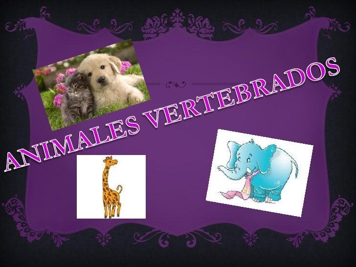 Los mamíferos presentan las siguientes características:• Tienen su cuerpo cubierto de pelo.• Sus extremidades tienen gener...