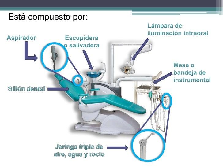 Conocimiento De La Unidad Dental