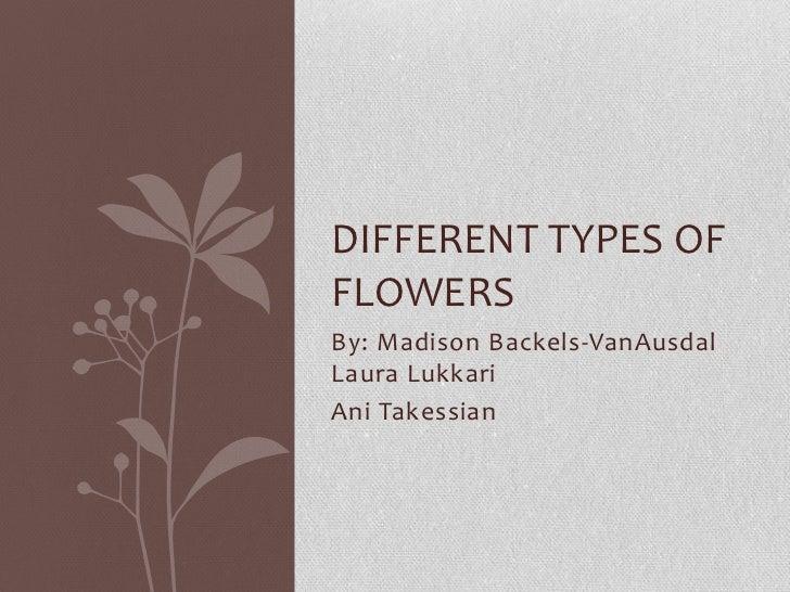 DIFFERENT TYPES OFFLOWERSBy: Madison Backels-VanAusdalLaura LukkariAni Takessian