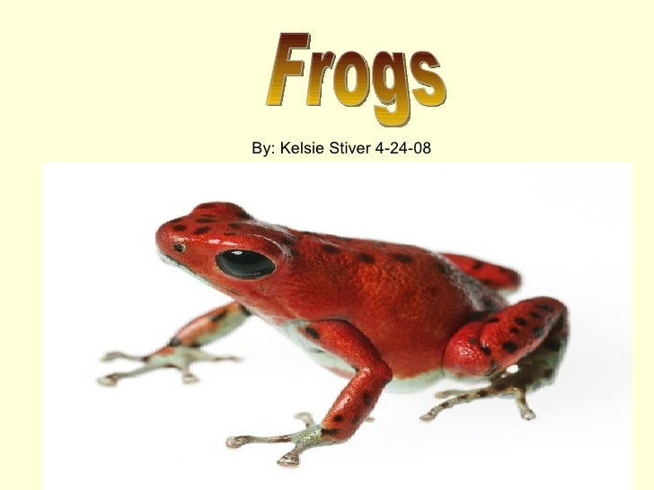 Frogs By: Kelsie Stiver 4-24-08
