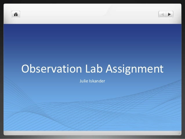 Observation Lab Assignment          Julie Iskander