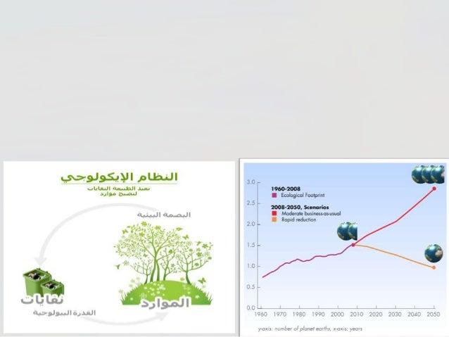 2010البصمة البيئية Slide 3