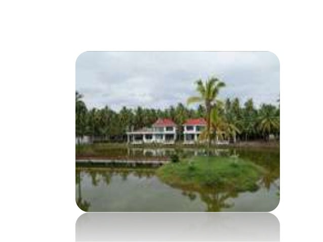 Resorts in Andhra Pradesh The best over viewing of lotus pond resort ,can relax outdoor and enjoy the nature of life.