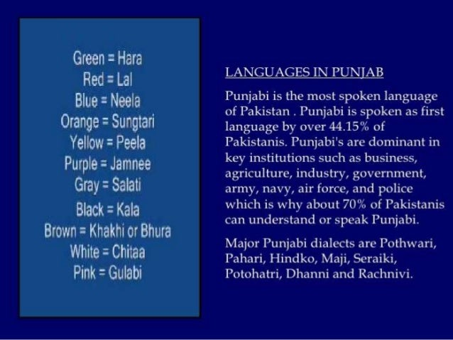 essay mother tongue punjabi Punjabi essays in punjabi language - give your assignments to the most  india  recognizes 112 mother deeply but to learn punjabi images.