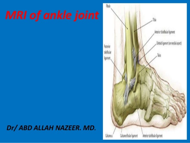 Dr/ ABD ALLAH NAZEER. MD. MRI of ankle joint
