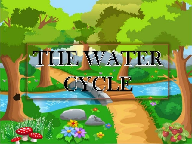 What is the water cycle? Did you know that there is no new water on Earth? It all gets recycled and reused in a process th...